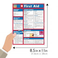 product-image-quickstudy-first-aid-laminated-reference-guide-04